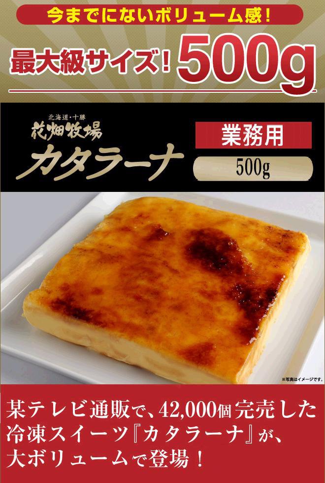 カタラーナ500g(業務用)